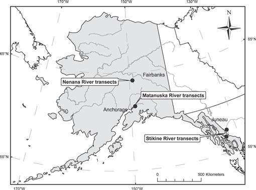 Ecology of Invasive Melilotus albus on Alaskan Glacial River
