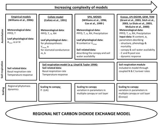 Modeling Canopy CO2 Exchange in the European Russian Arctic