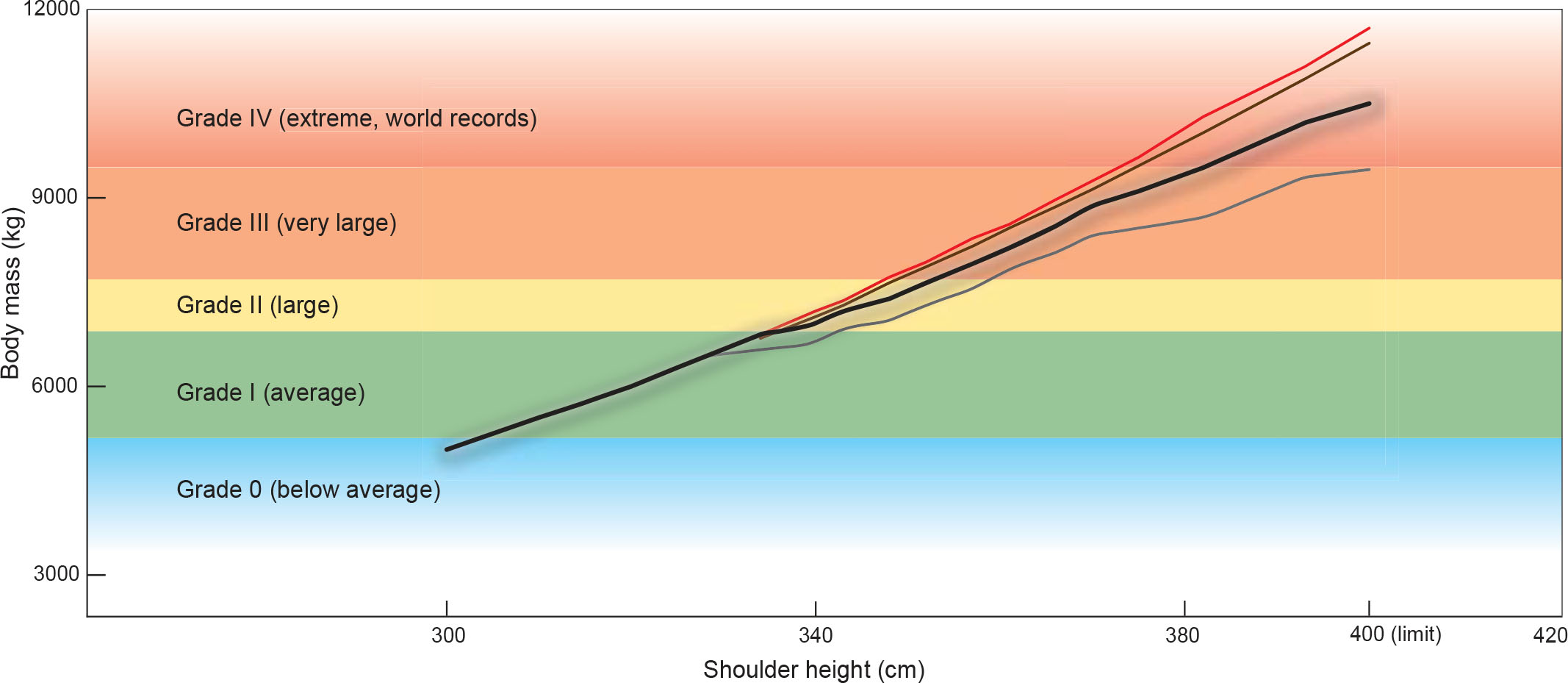 Shoulder Height, Body Mass, and Shape of Proboscideans