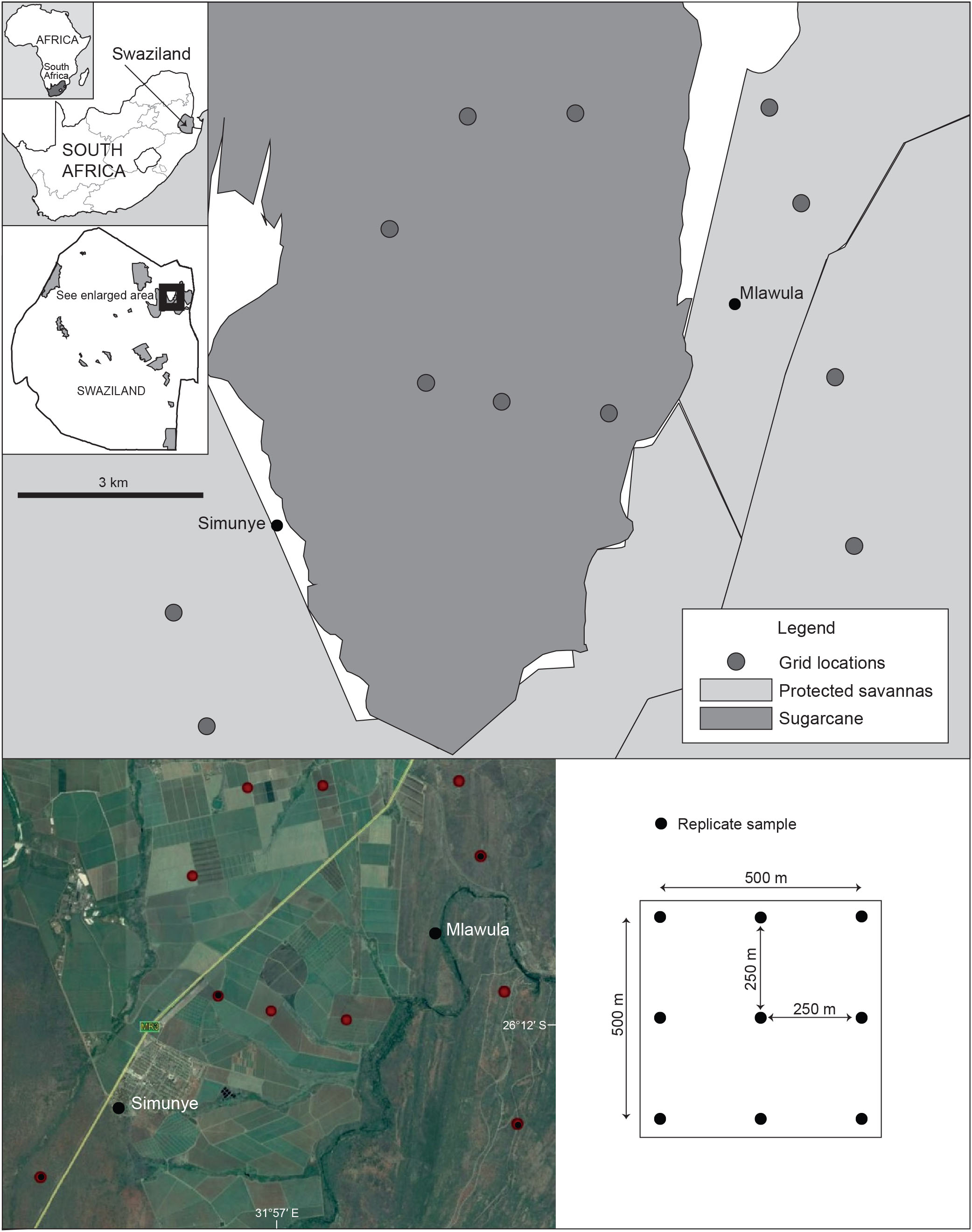 Changes in Bat Community Composition and Activity Patterns