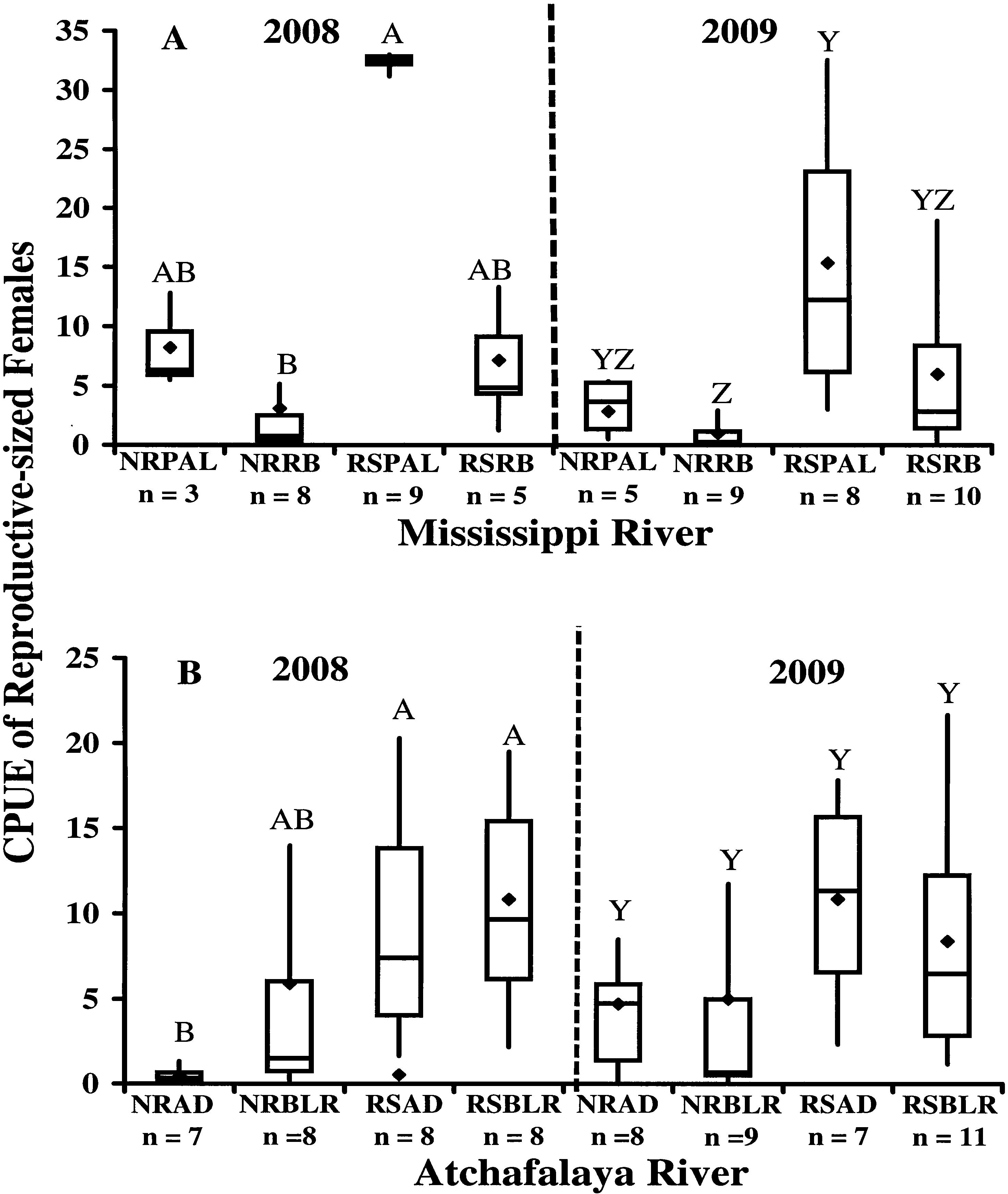 Female Downstream-Hatching Migration of the River Shrimp