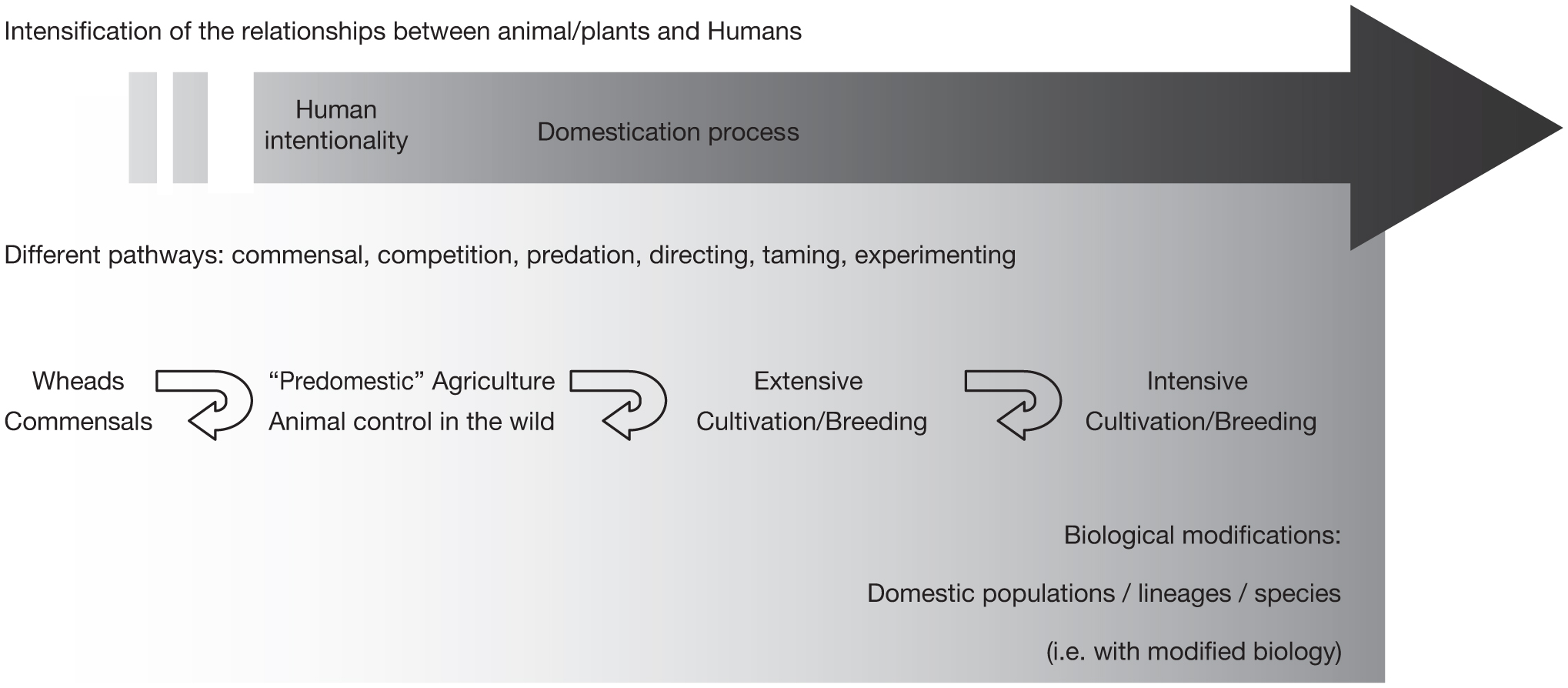 Early domestication and farming: what should we know or do