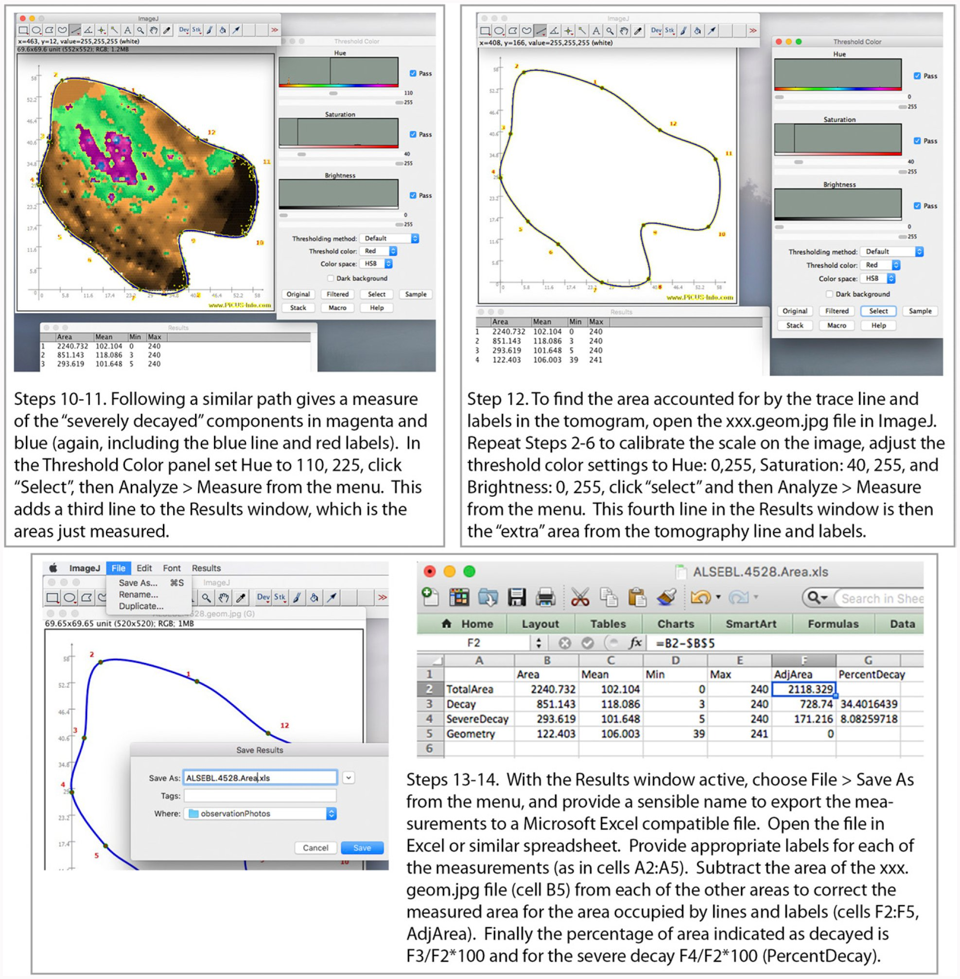 Use of Sonic Tomography to Detect and Quantify Wood Decay in