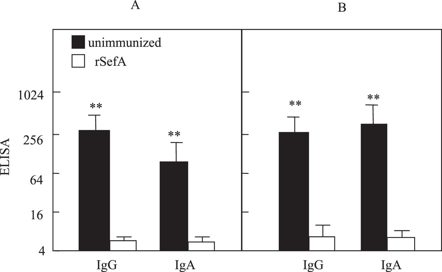 Reduction of Salmonella Enteritidis Number After Infections