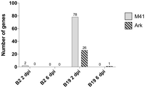 Effects of Chicken MHC Haplotype on Resistance to Distantly