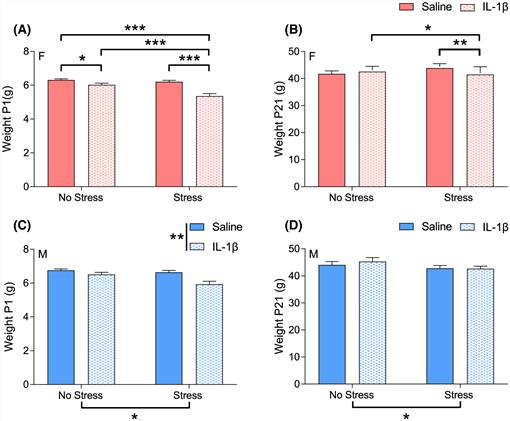 Prenatal two-hit stress affects maternal and offspring