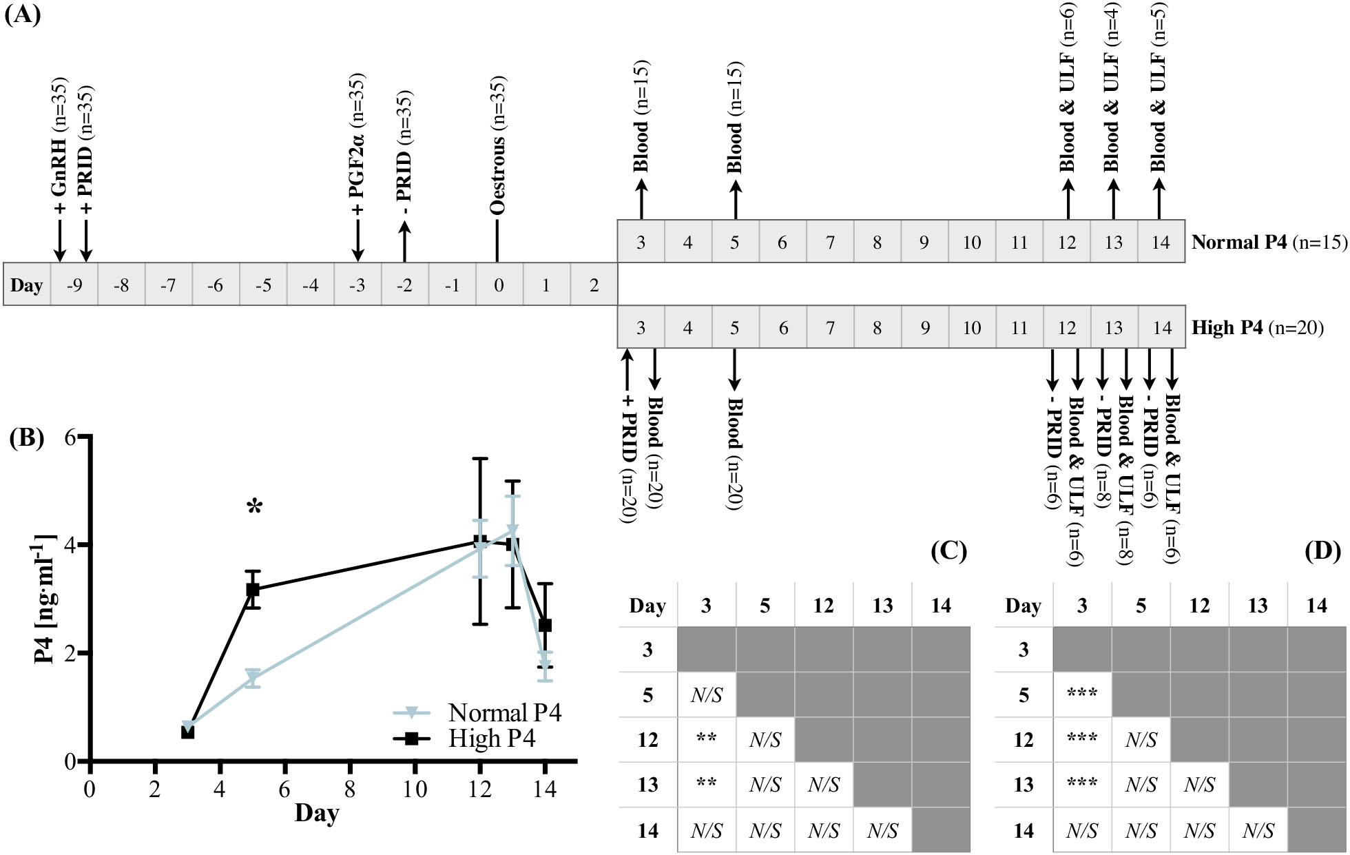 Biochemical characterization of progesterone-induced