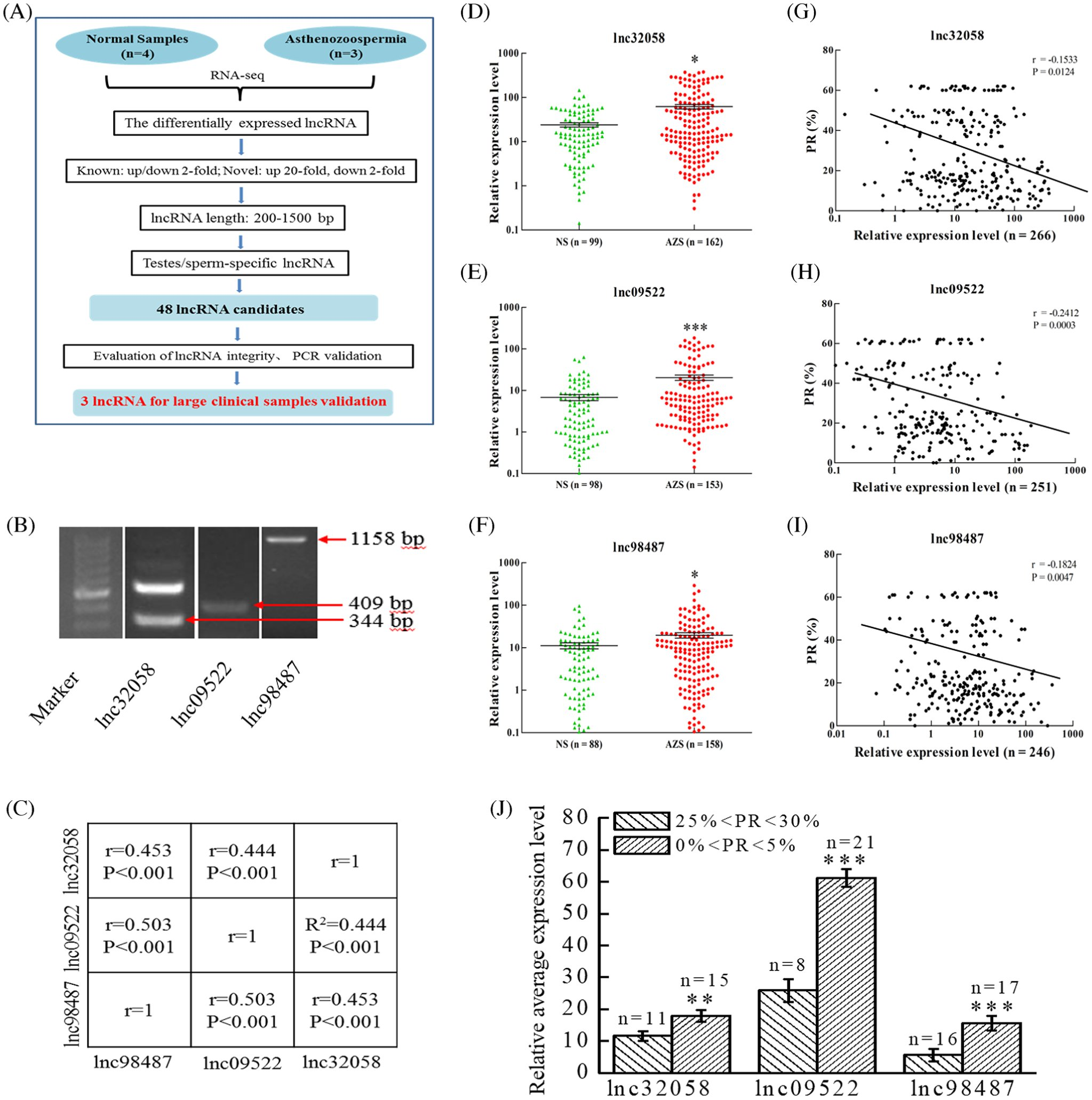Expression profiles and characteristics of human lncRNA in