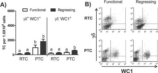 Luteal Microenvironment Directs Resident T Lymphocyte