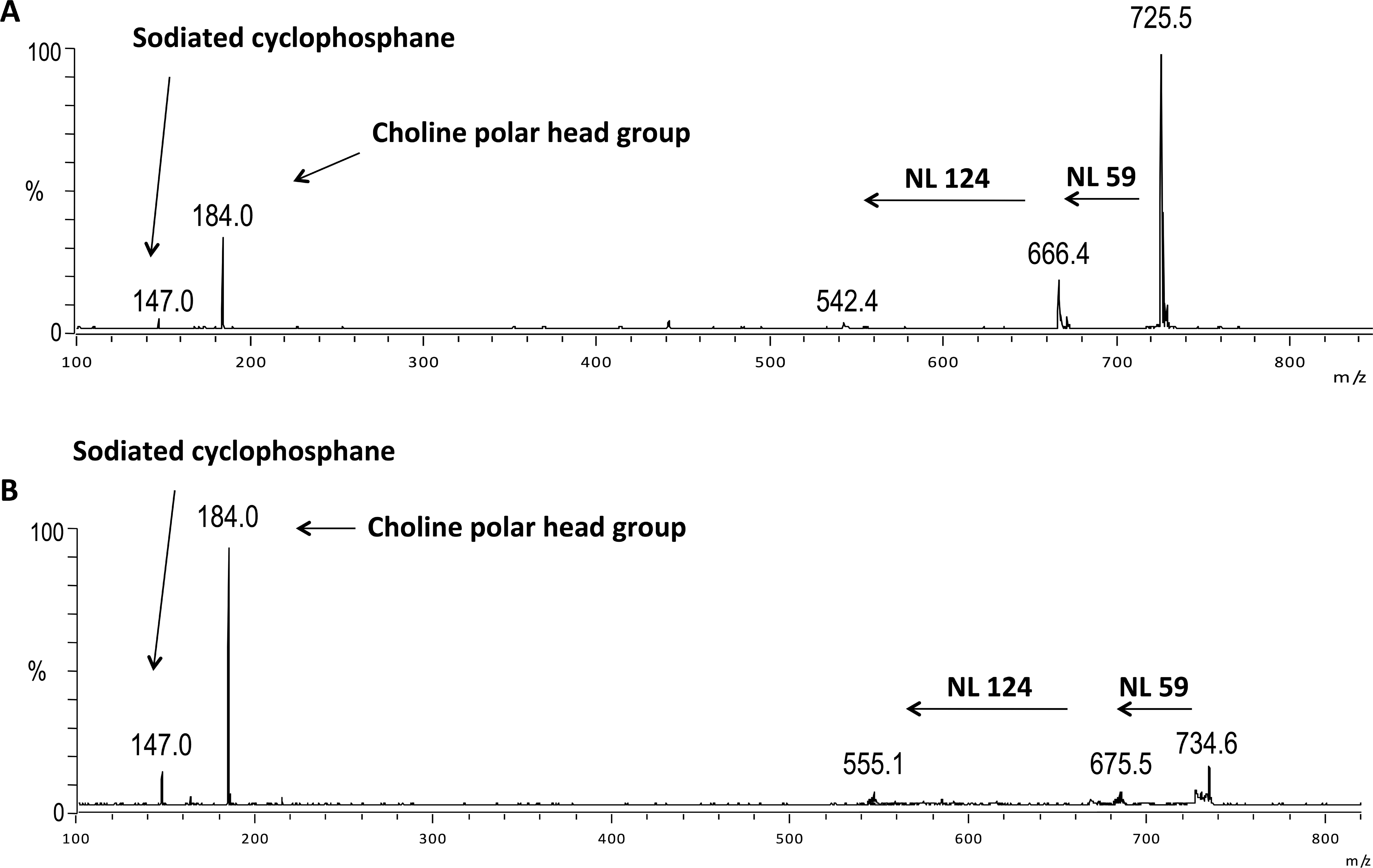 Phosphatidylcholine and Sphingomyelin Profiles Vary in Bos