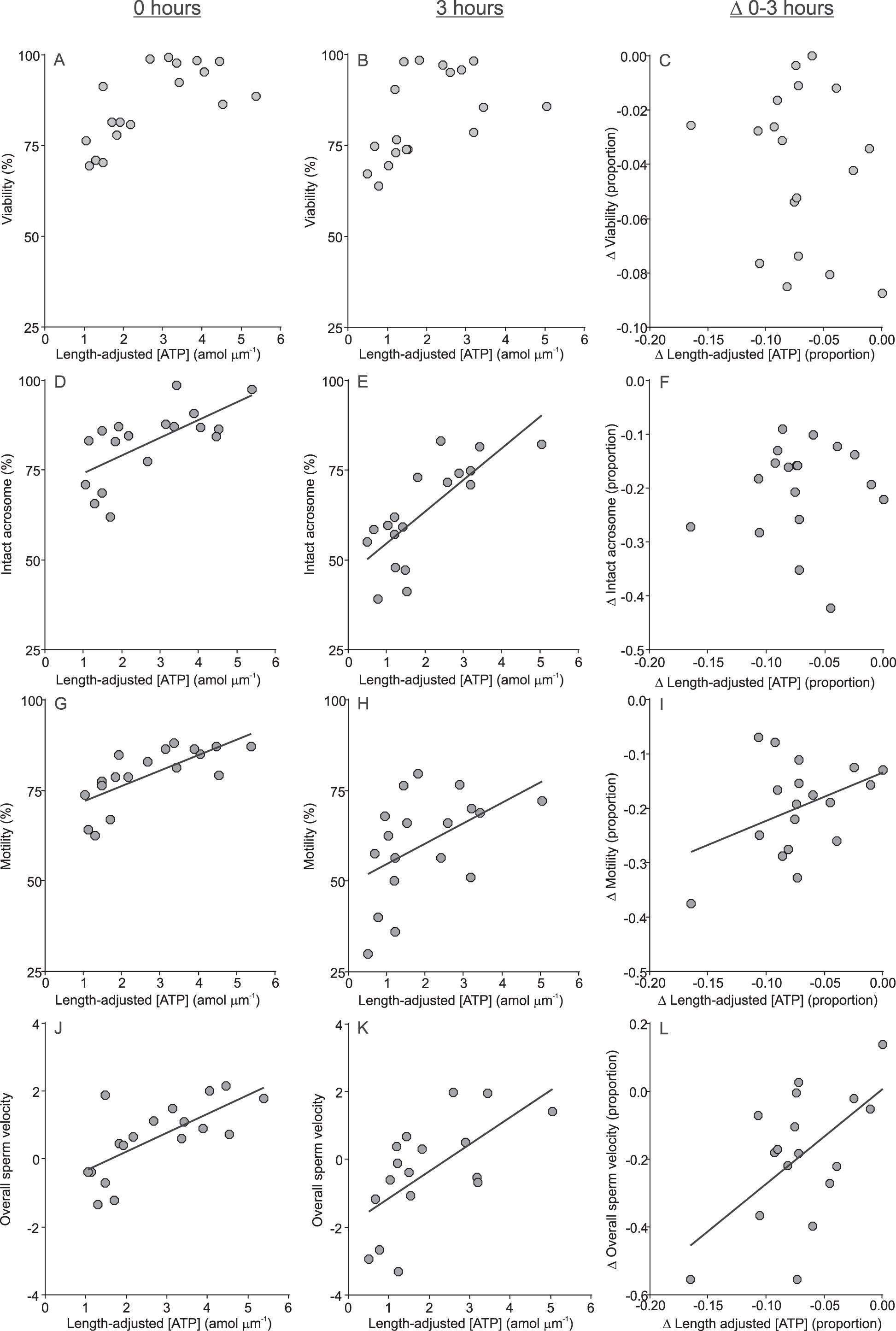 e8c7fdc8b0 Performance of Rodent Spermatozoa Over Time Is Enhanced by Increased ...