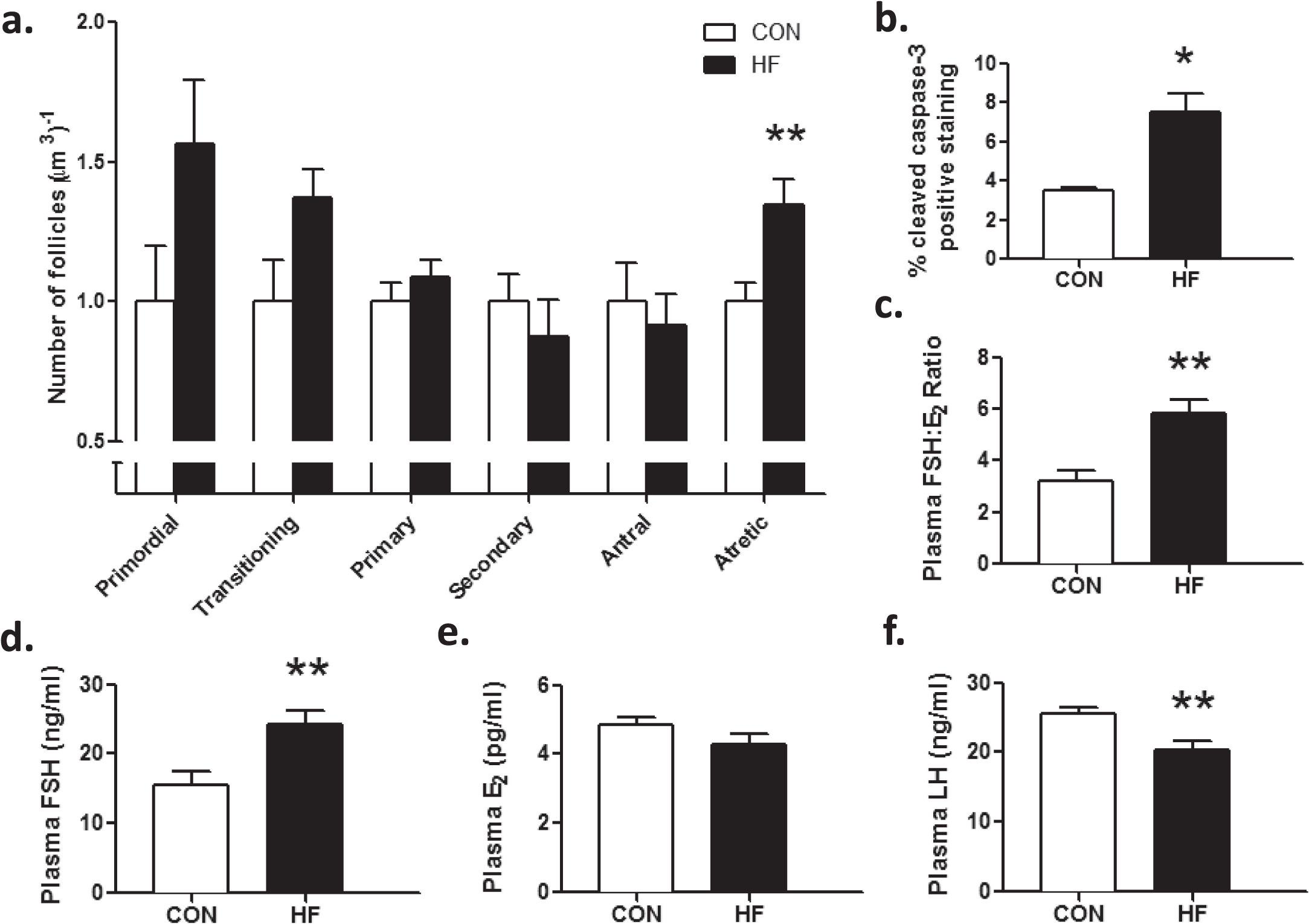 Maternal High-Fat Diet-Induced Loss of Fetal Oocytes Is