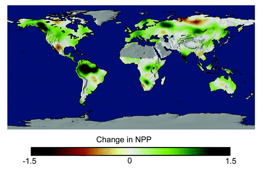 A Continuous Satellite-Derived Measure of Global Terrestrial Primary