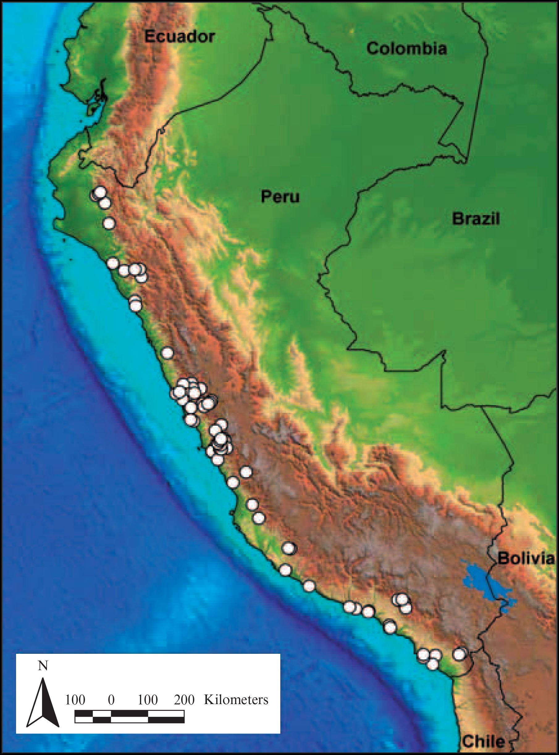 Taxonomy And Conservation Of Haageocereus Backeb Cactaceae In Peru