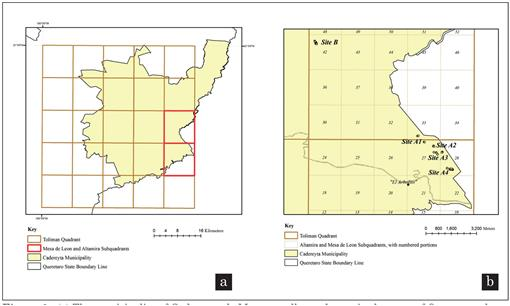 In situ analysis of the current conservation status of
