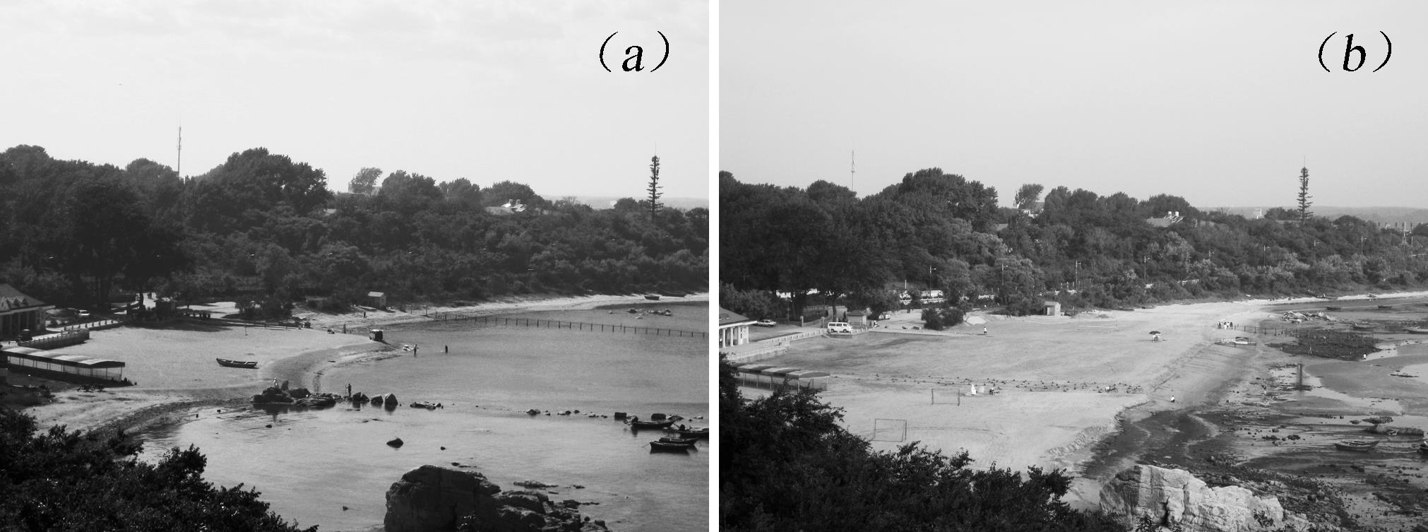 Effects of Submerged Breakwater on Hydrodynamics and Shoreline