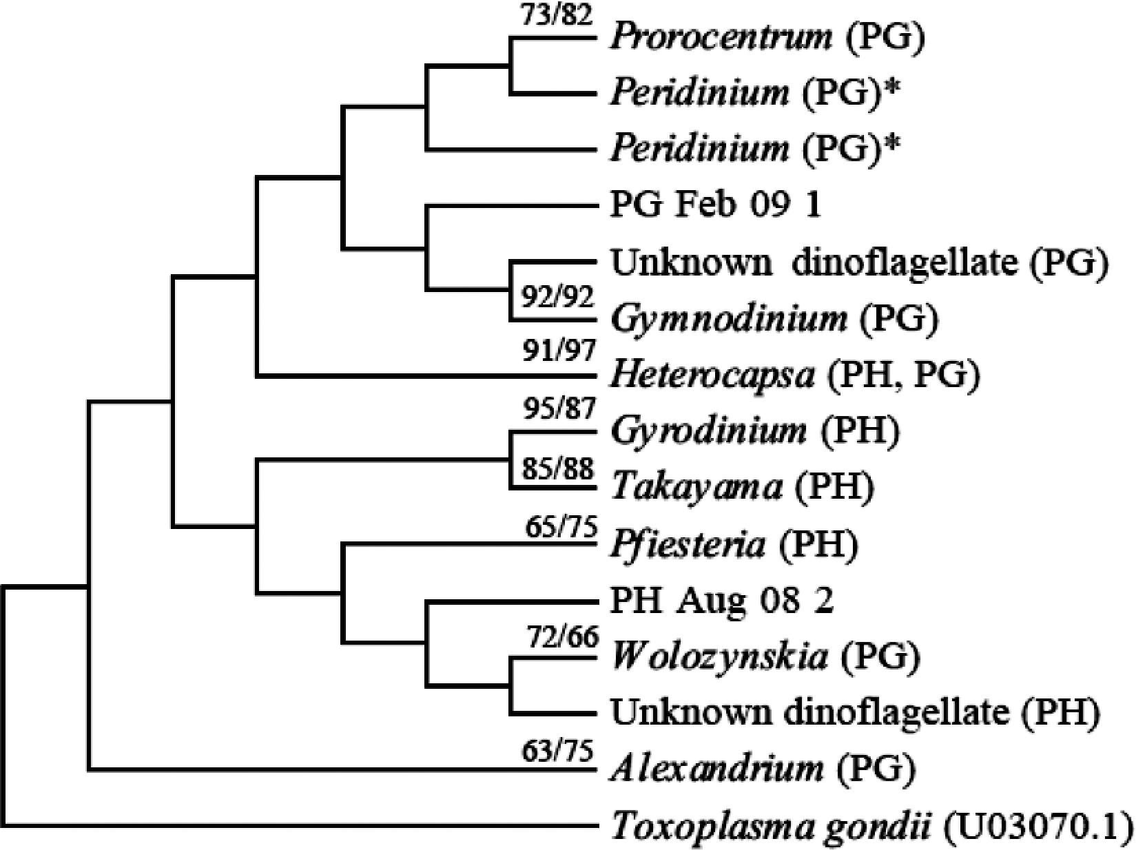 A Tale of Two Ports: Dinoflagellate and Diatom Communities