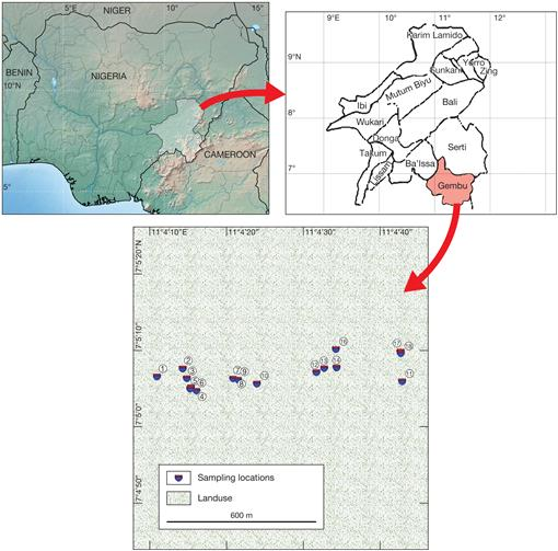 Bryophytes Associated with Termite Mounds on the