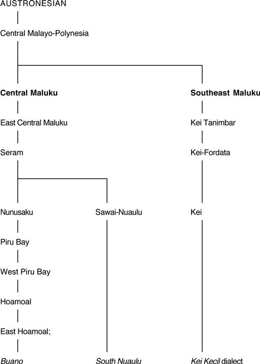 The Biocultural History of Manihot esculenta In the Moluccan