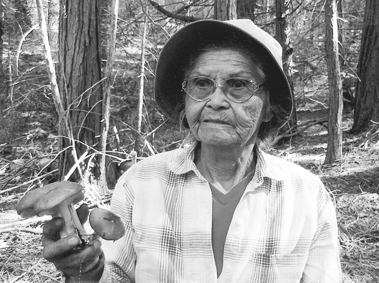 California Indian Ethnomycology and Associated Forest Management