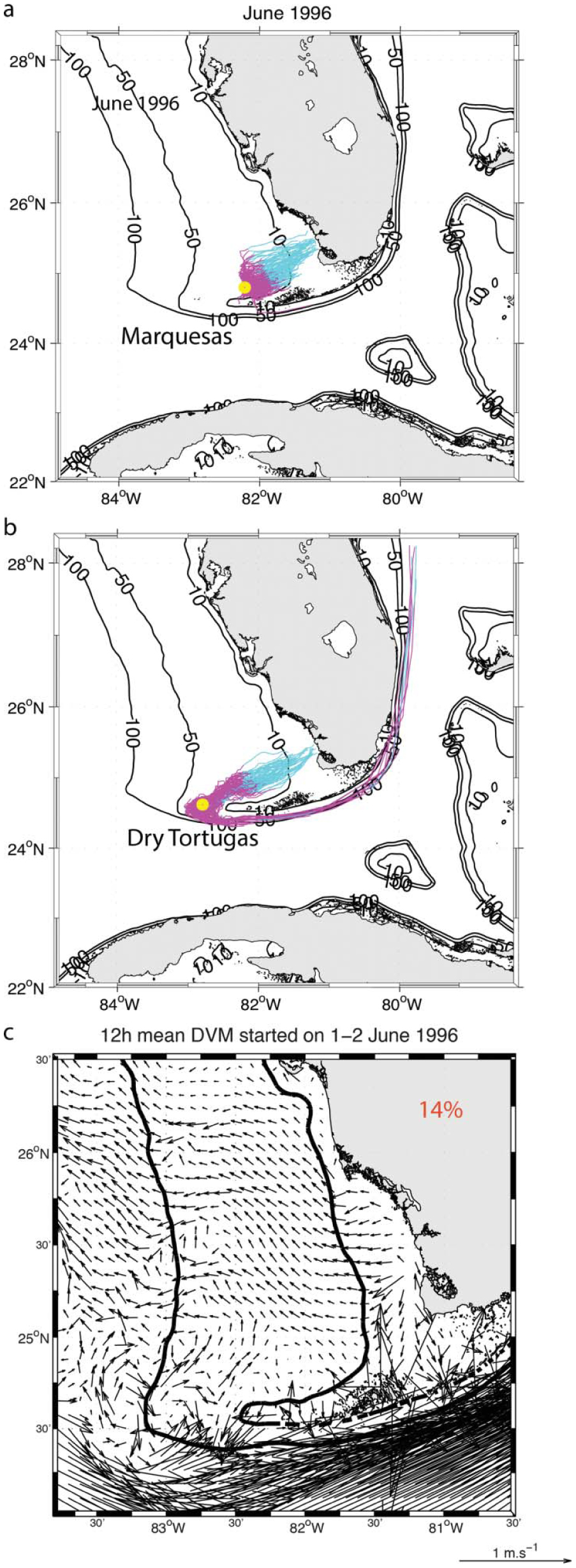 Modeling Larval Transport And Settlement Of Pink Shrimp In
