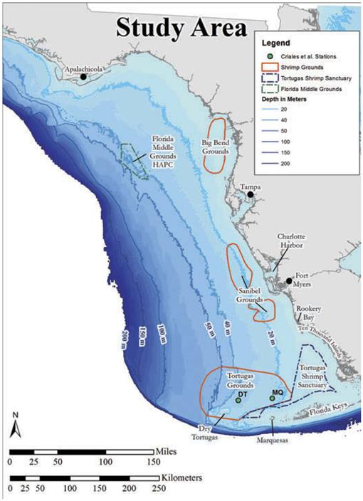 Linking Oceanographic Modeling and Benthic Mapping with