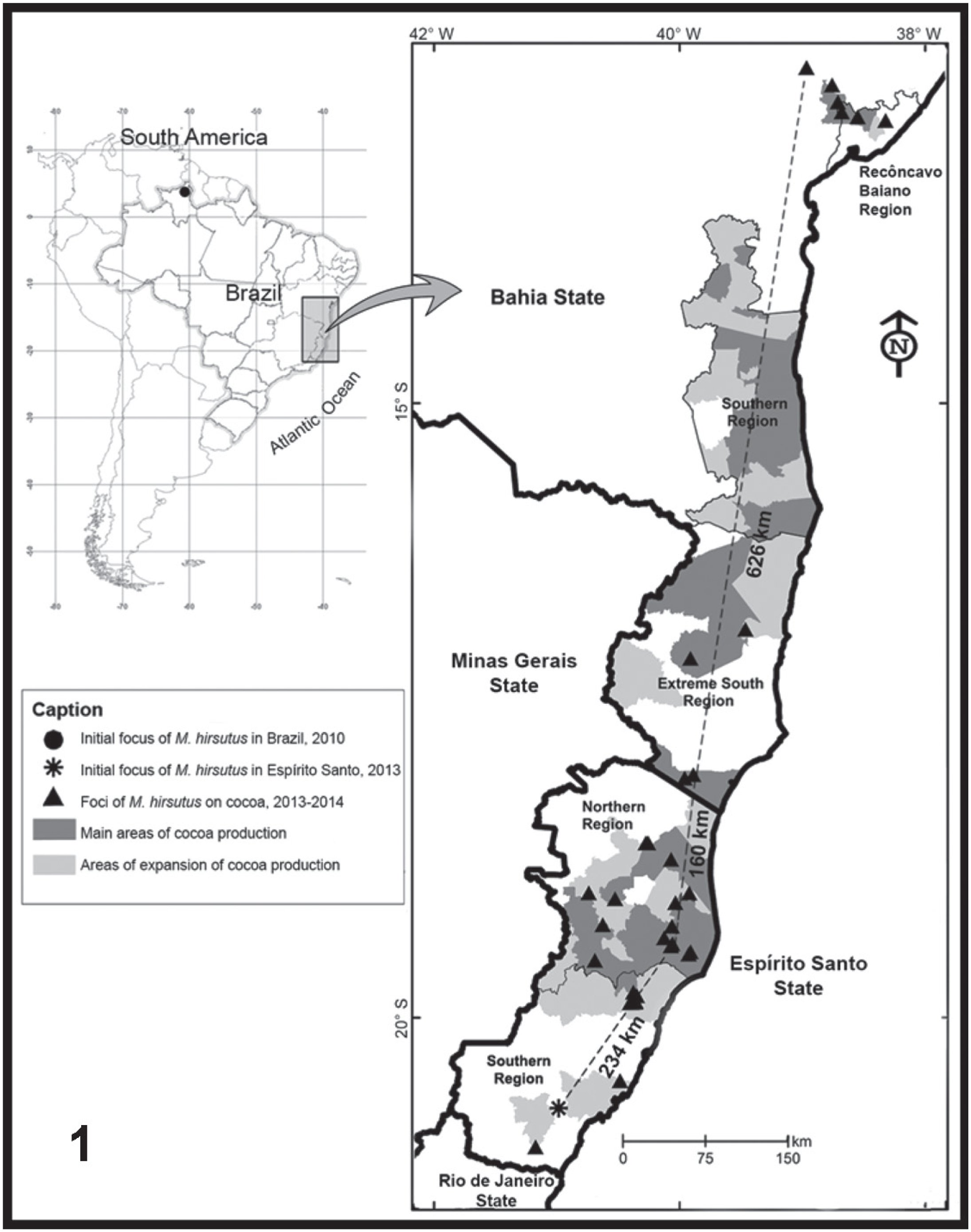 invasion of the main cocoa producing region of south america by