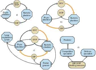 The Role of Biota in Shaping the Phosphorus Cycle in Lakes