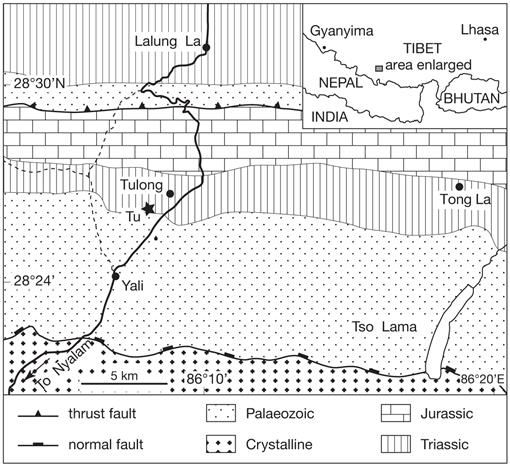 In the aftermath of Permian-Triassic boundary mass