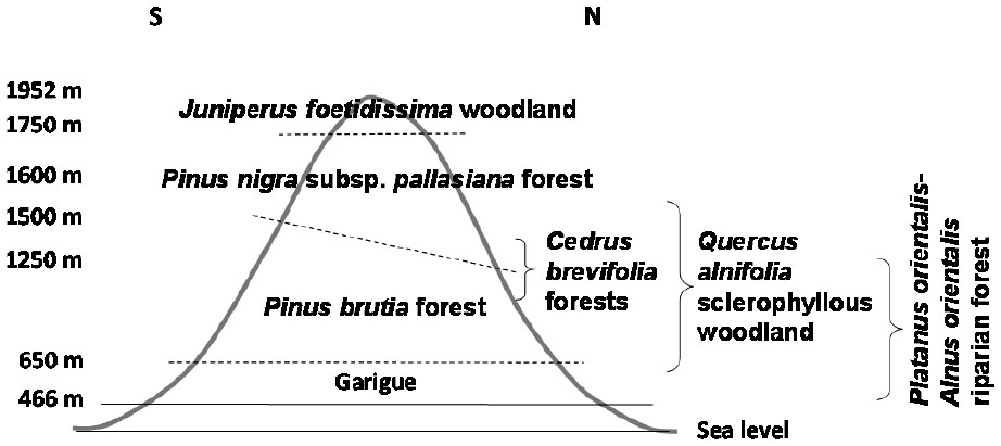 Bryophyte Ecology and Conservation in the Troodos Mountains