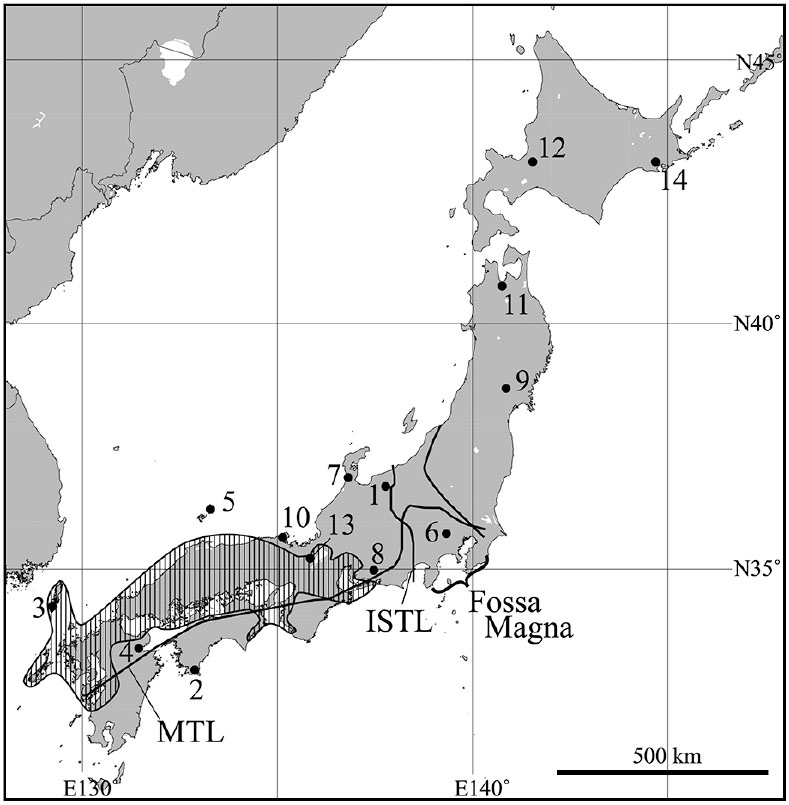 Systematics of the Widely Distributed Japanese Clouded