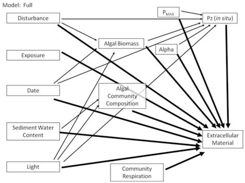 Environmental And Algal Community Influences On Benthic Algal