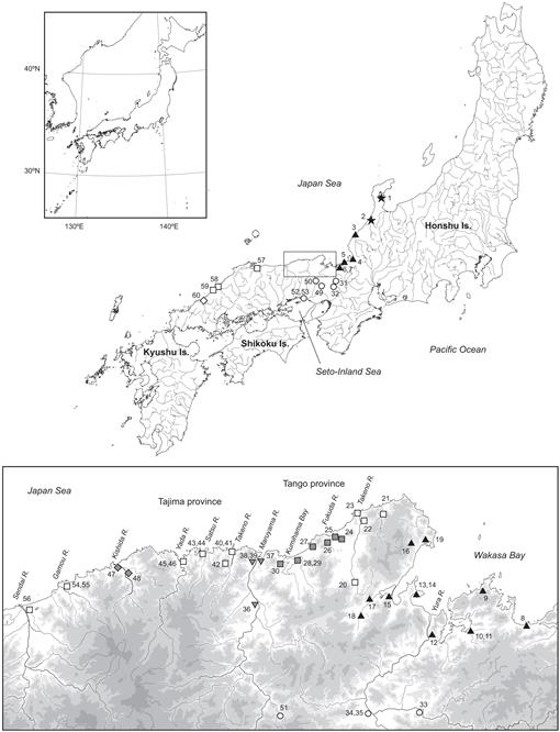 Origin Of Boundary Populations In Medaka Oryzias Latipes Species