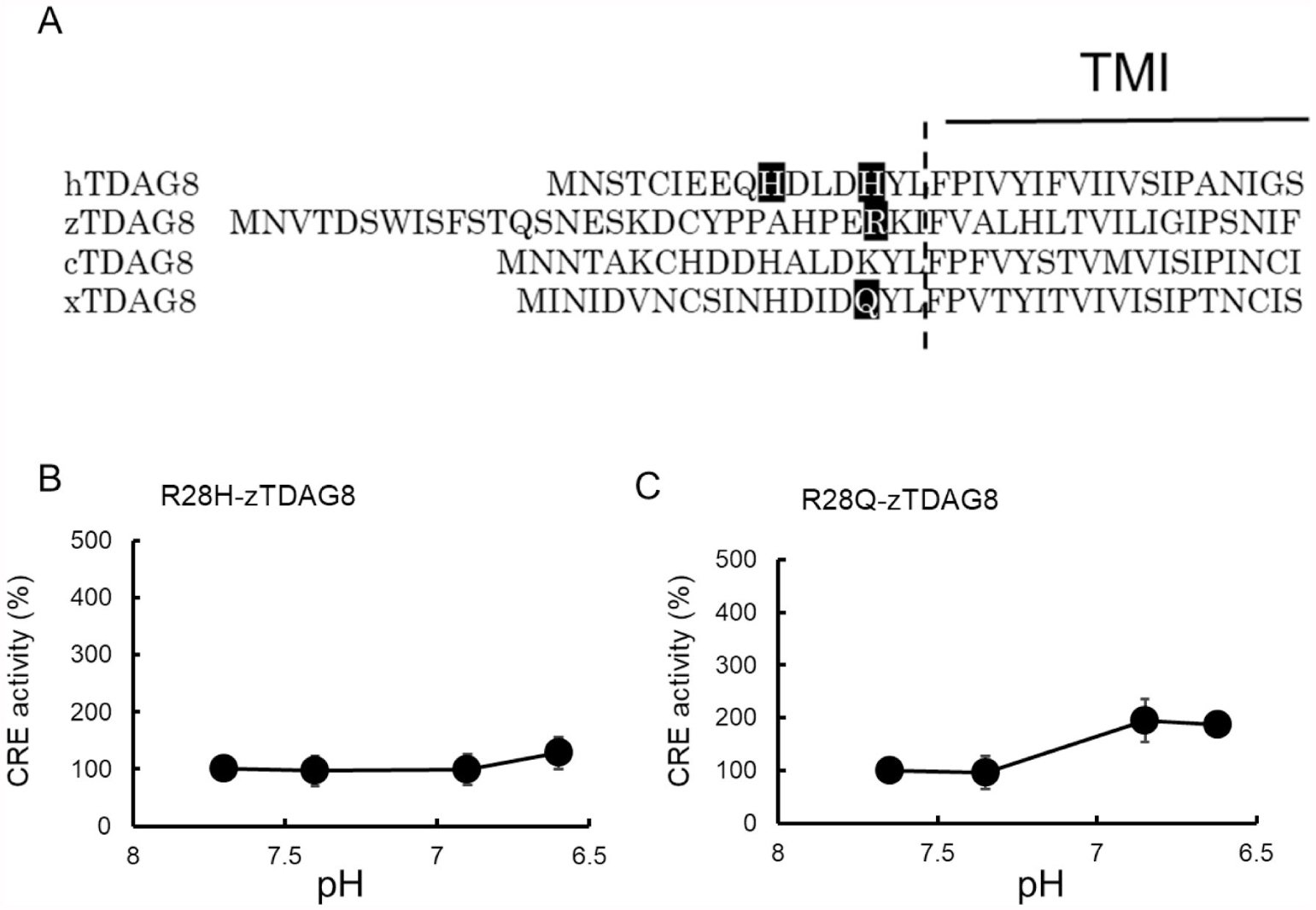 Protons Differentially Activate TDAG8 Homologs from Various