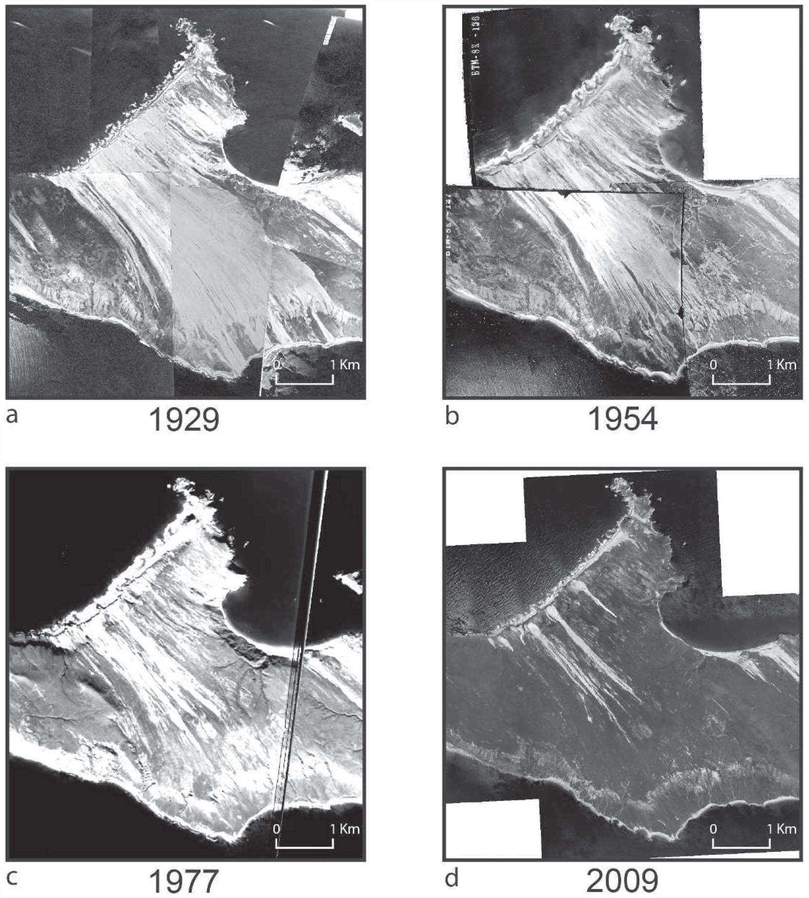Changes in Vegetation and Biological Soil Crust Communities on Sand