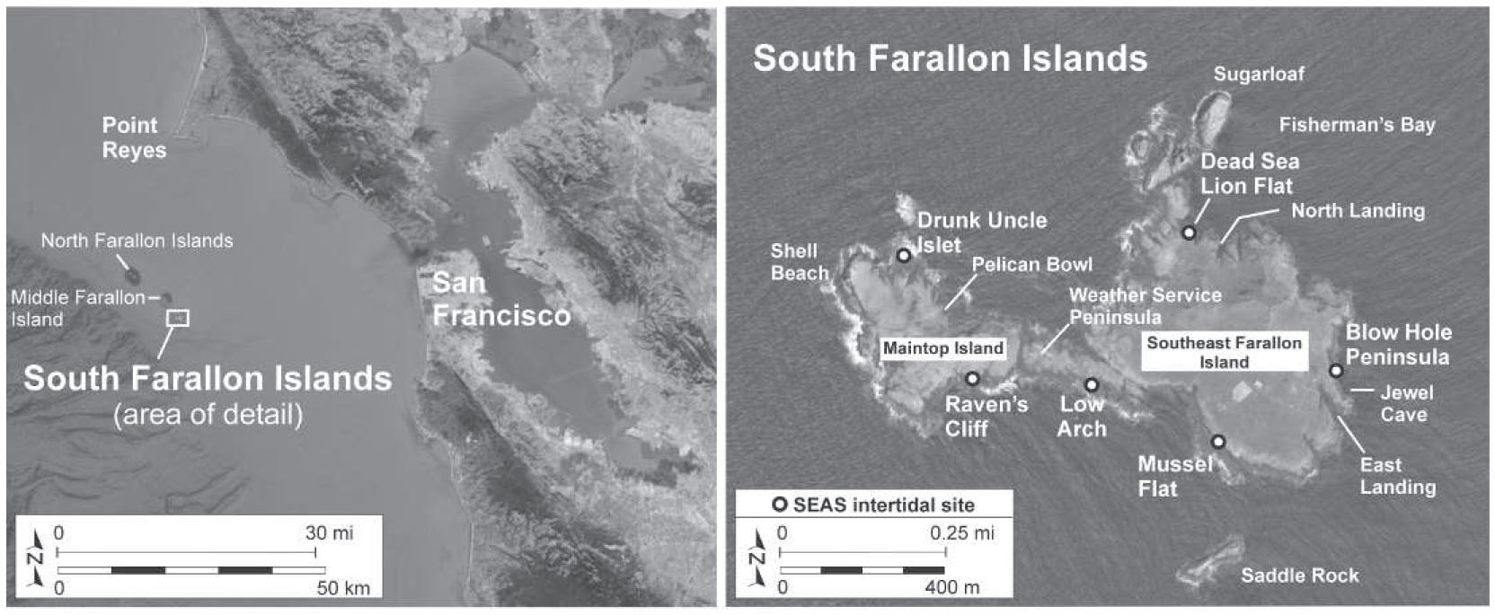 Status and Trends of the Rocky Intertidal Community on the Farallon ...