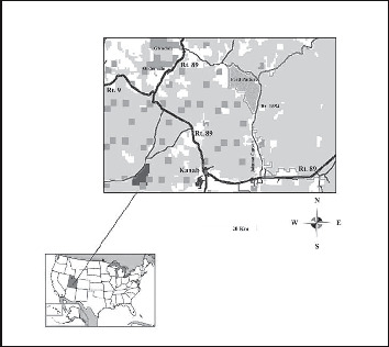 Avian Community Responses to Mechanical Thinning of a Pinyon