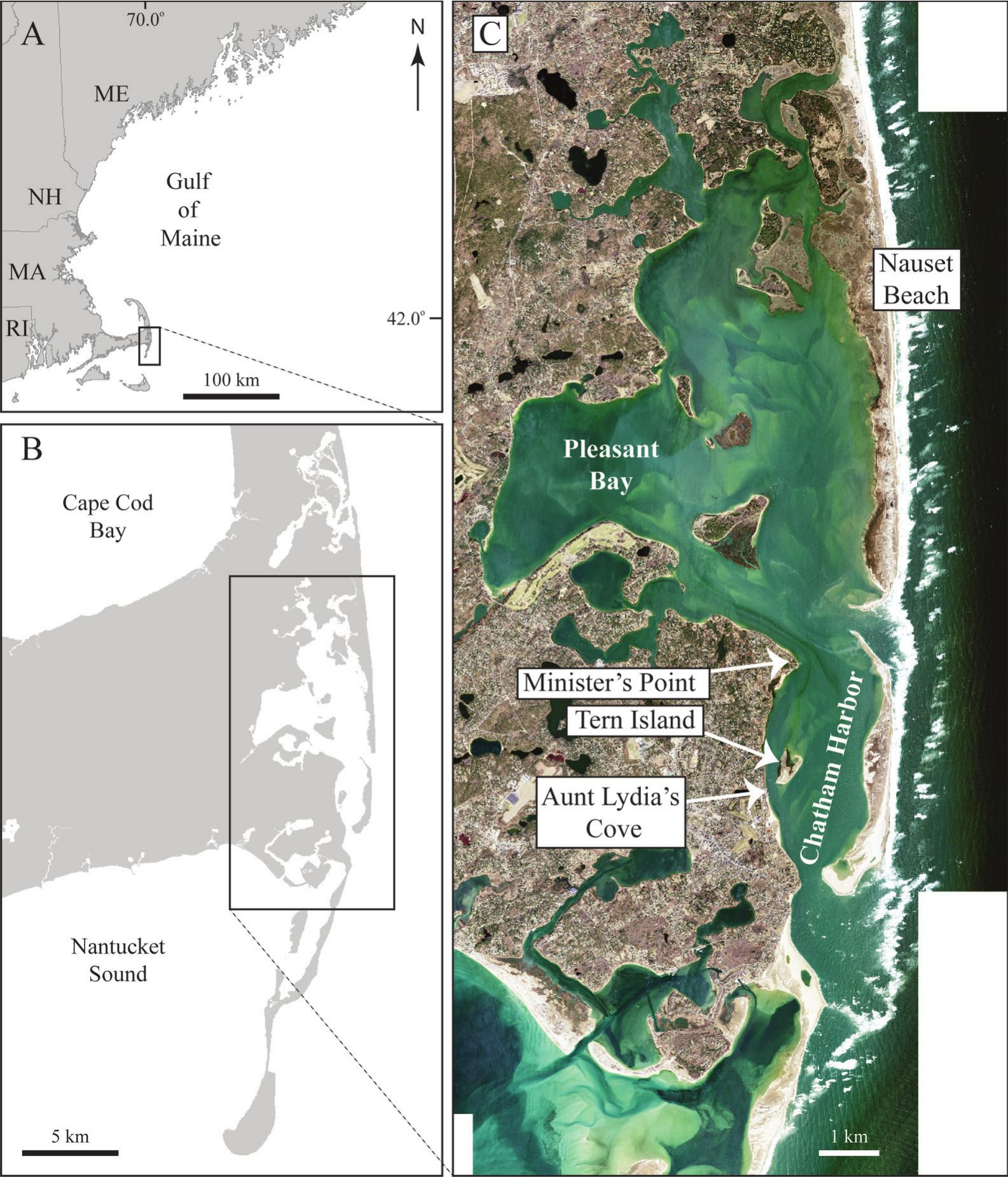 Tidal Inlet Evolution And Impacts Of