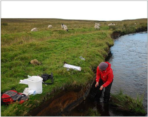 Fire in the Moor: Mesolithic Carbonised Remains in Riverine