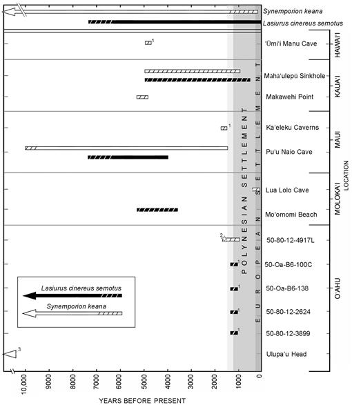 A Second Endemic Land Mammal for the Hawaiian Islands: A New