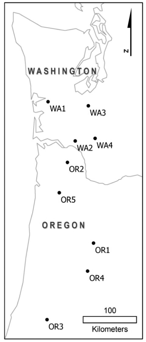 The Distribution Of Tree Roots In Douglas Fir Forests In The Pacific
