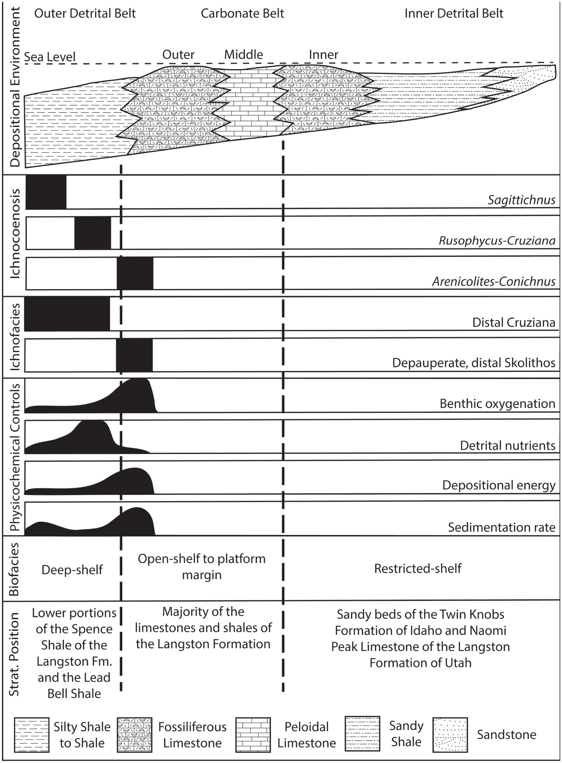 Ichnotaxonomy of the Cambrian Spence Shale Member of the Langston