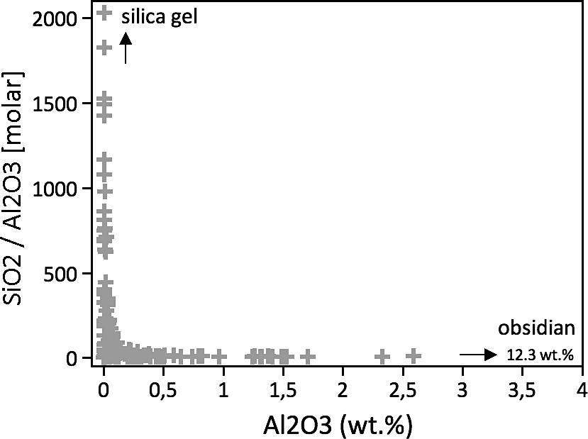 EXPERIMENTAL SILICIFICATION OF THE TREE FERN DICKSONIA