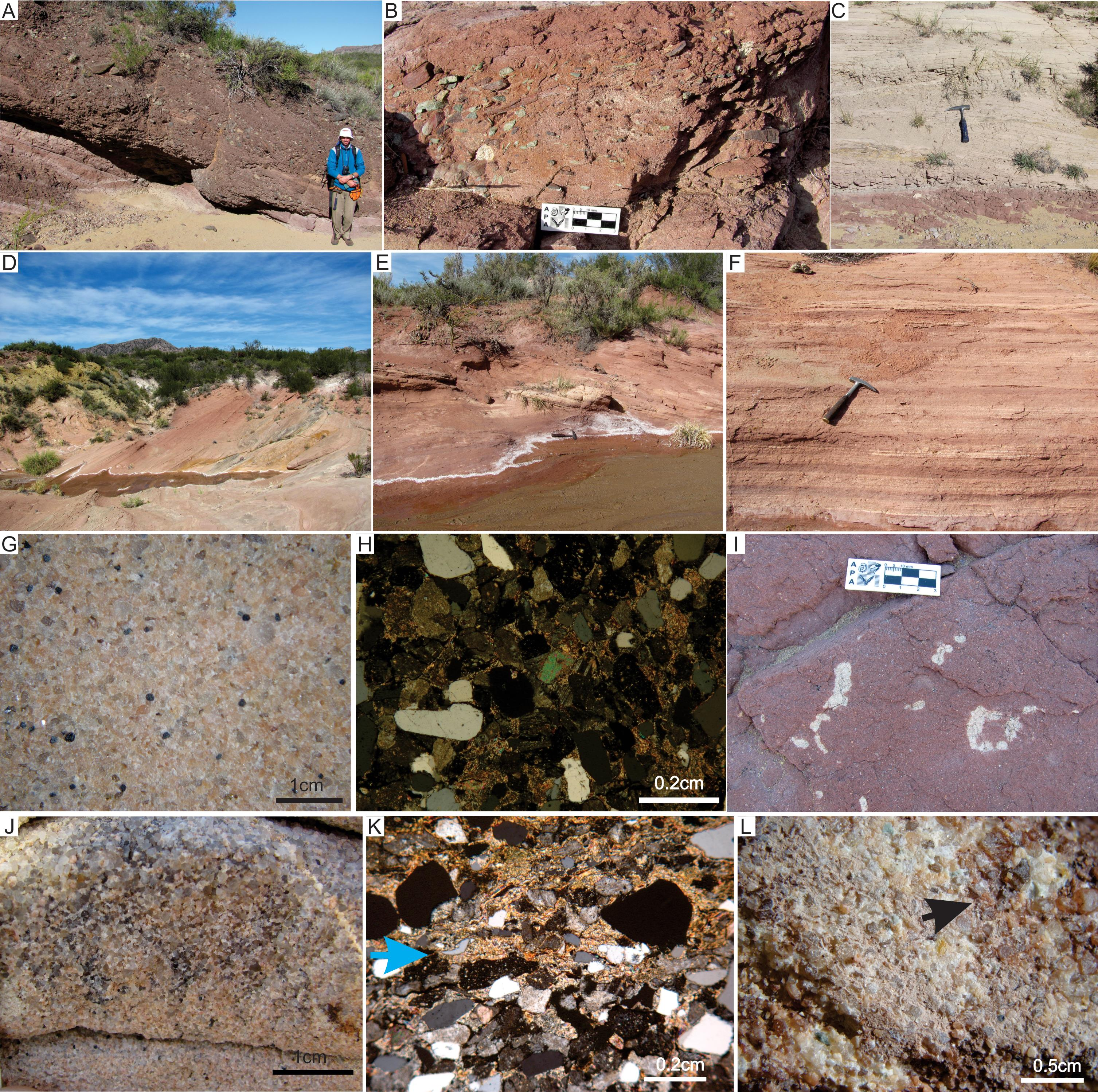 TETRAPOD TRACKS TAPHONOMY IN EOLIAN FACIES FROM THE PERMIAN