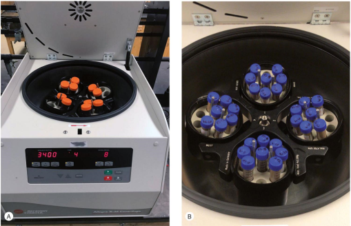 A Guide To Preparation Protocols In Palynology