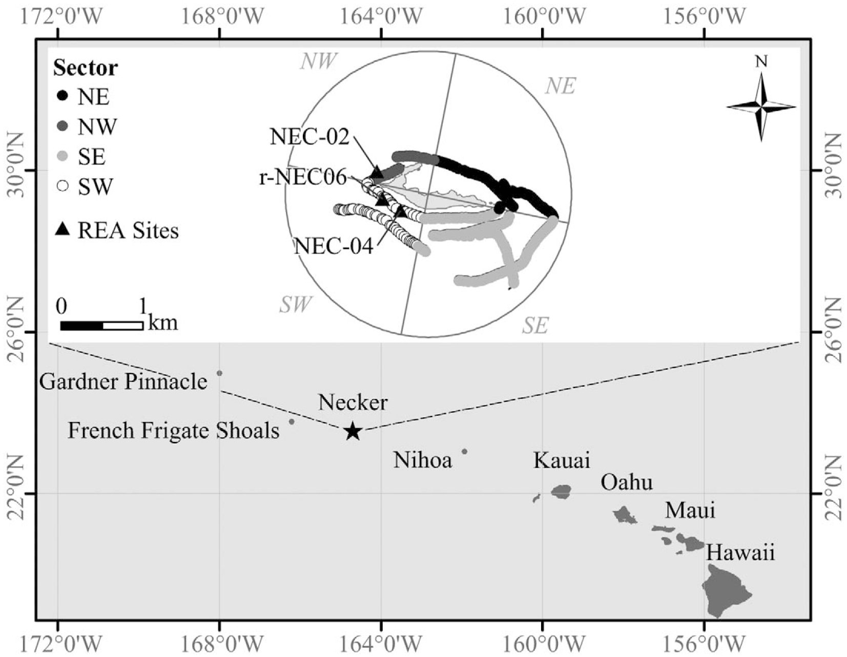 Spatial and Temporal Comparisons of Benthic Composition at Necker