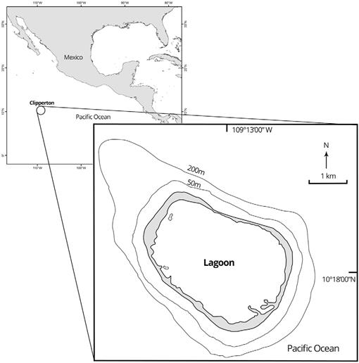 Fishes Of Clipperton Atoll Eastern Pacific Checklist