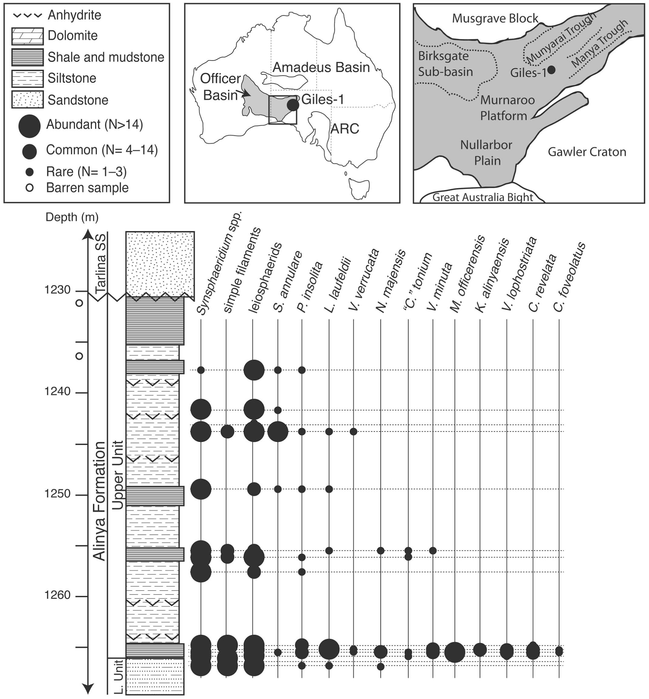 Organic Walled Microfossils Of The Mid Neoproterozoic Alinya