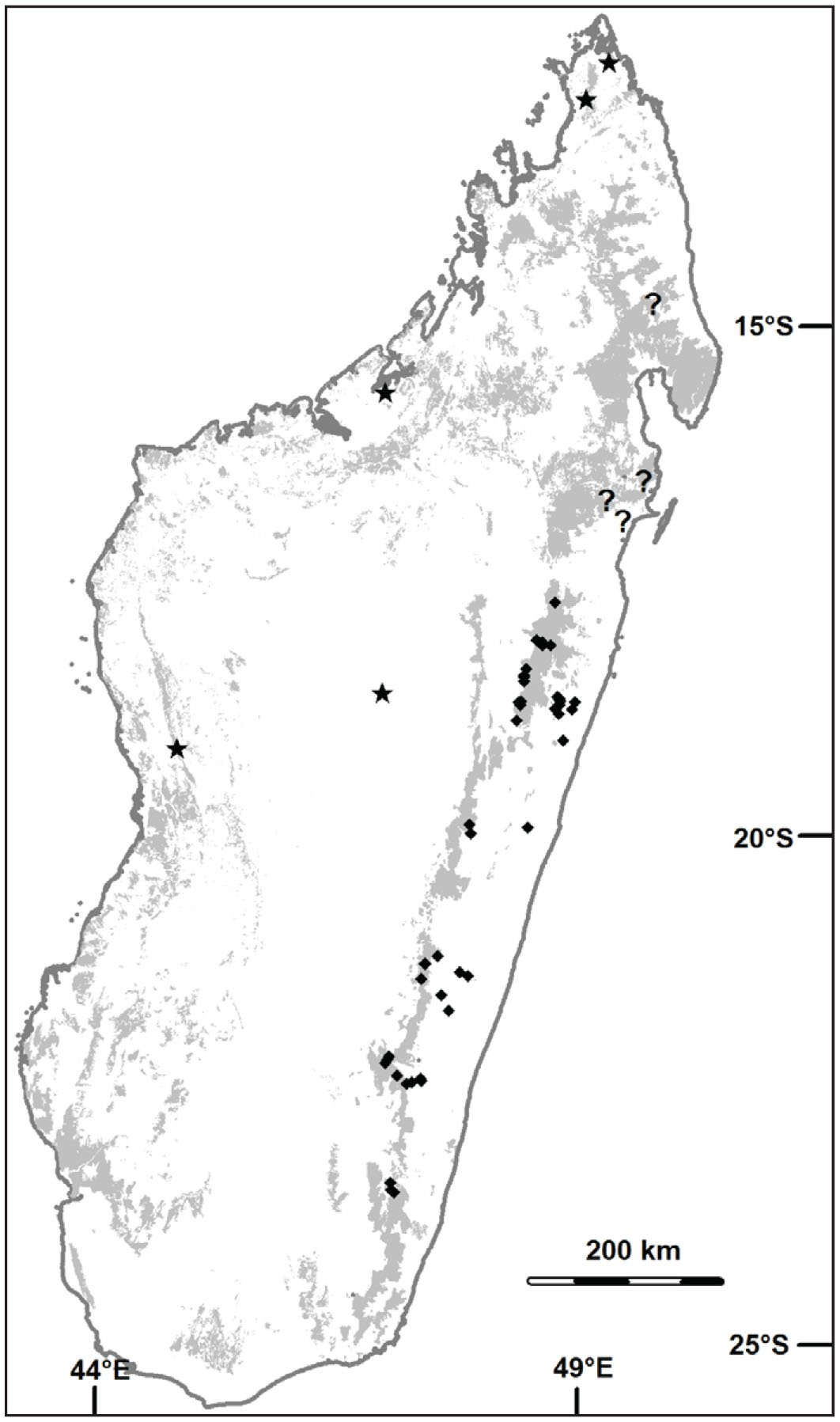 large culmed bamboos in madagascar distribution and field Madagascar Ethnic Groups figure 15