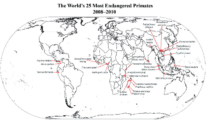 Primates in Peril: The World's 25 Most Endangered Primates